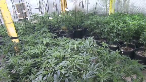 Colorado teens on pot Cabrera Newday _00000010.jpg