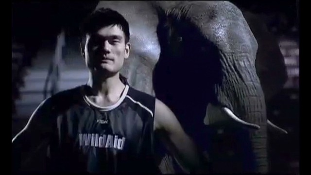 Yao Ming fights ivory trade in China