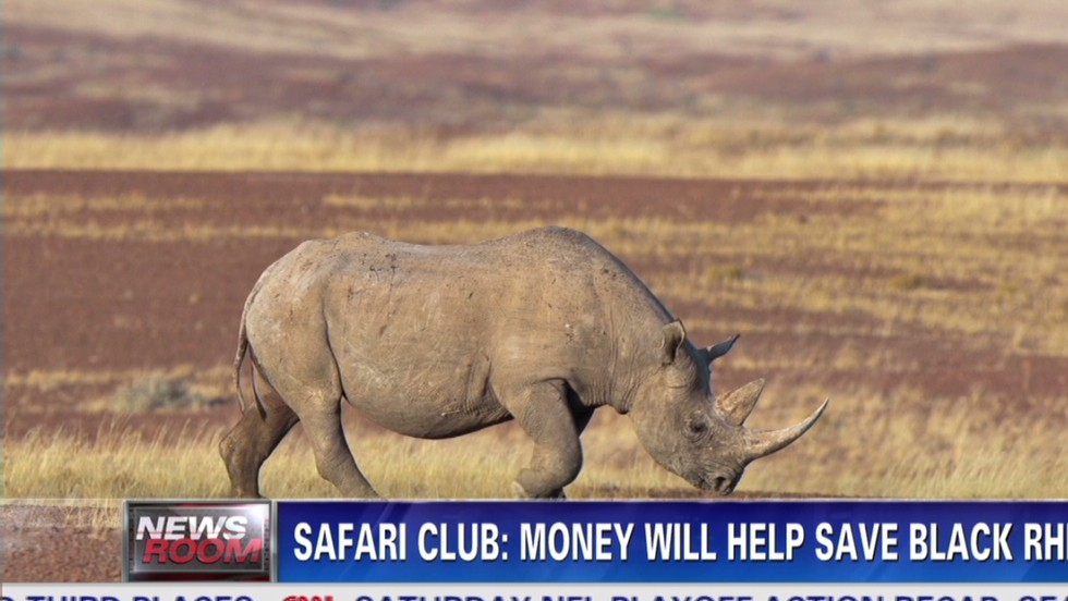 Can hunter save black rhinos by killing one in Namibia? - CNN