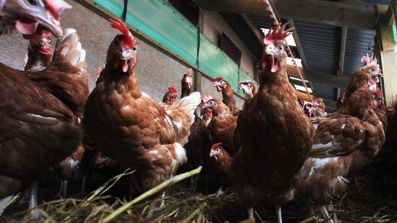 December 11, 2013: The FDA announces it wants to phase out the use of certain antibiotics in food-producing animals.