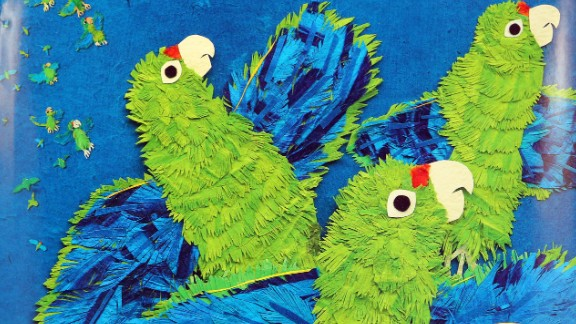 """""""Parrots Over Puerto Rico,"""" written by Susan L. Roth and Cindy Trumbore and illustrated by Roth, is the Robert F. Sibert Informational Book Award winner."""