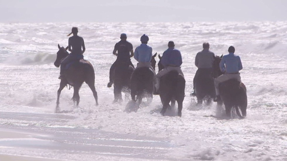 It's all about giving the horses what they need, he says, whether it's splashing around in the waves or pottering around in paddocks with their mates.