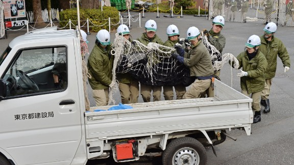 The acting ape was immediately wrapped in a large net and hauled away on a truck.