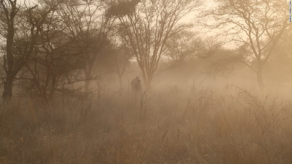 Tracking the elephants on foot usually results in walking well behind in the herd's dust trail. It took the CNN crew several days to get close enough to film Zakouma's new born calves.