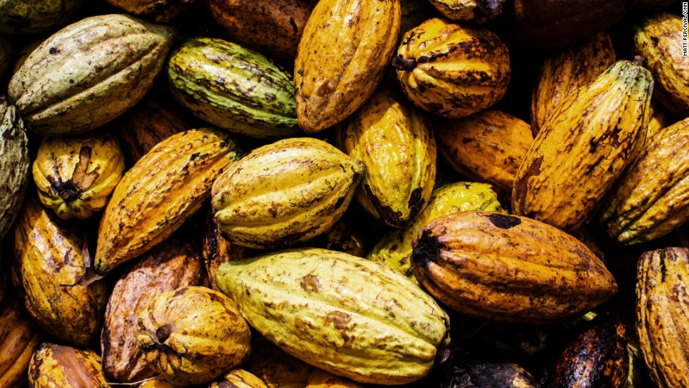 Cocoa Pods For Sale
