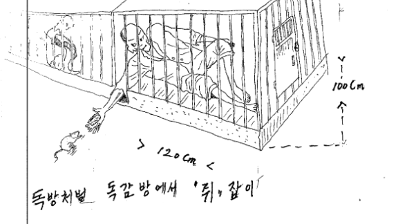 """Text: """"Solitary confinement punishment. Capturing mice from inside the cell."""""""