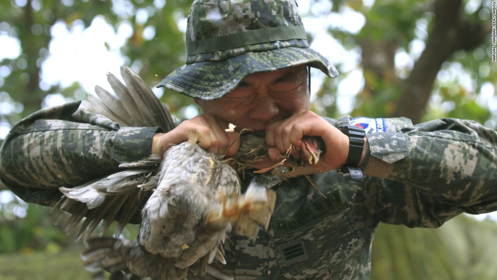 A South Korean marine bites a chicken neck during a jungle survival training course at a military base in Thailand's Chanthaburi province on February 15.
