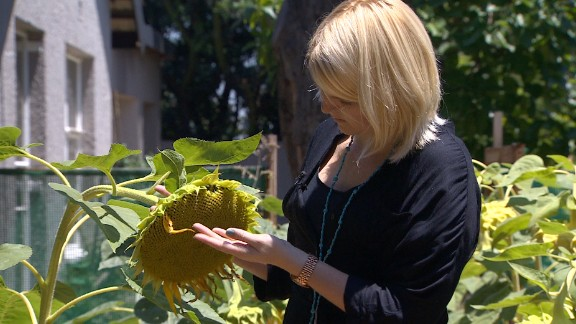 """<a href=""""http://edition.cnn.com/2014/02/21/business/at-16-she-was-failed-gardener/index.html"""" target=""""_blank"""">Gardening Reel</a> is a gardening startup founded in Johannesburg by Claire Reid. Her company creates greenfingered solutions for simplifying growing food."""
