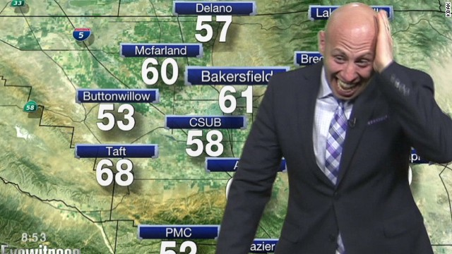 Weatherman spooked by spider