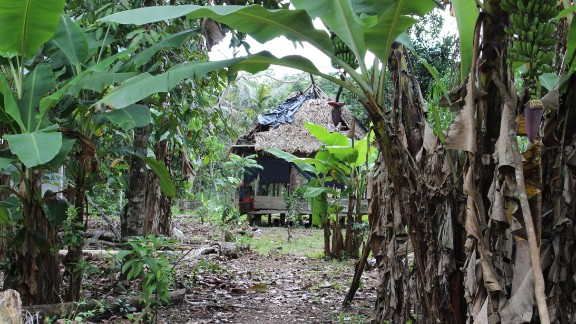 Llanchama is a tribal community of roughly 150 people spread out across land extending between the ITT and the adjacent oil Block 31 on the banks of the Tiputini river.