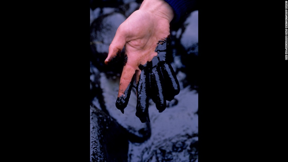 A worker demonstrates the thick coverage of the toxic crude oil washed up on Smith Island, Alaska.