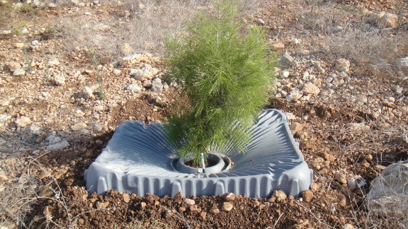 This lightweight square funnels rain water to the base of a tree while blocking sunlight, which kills weeds.