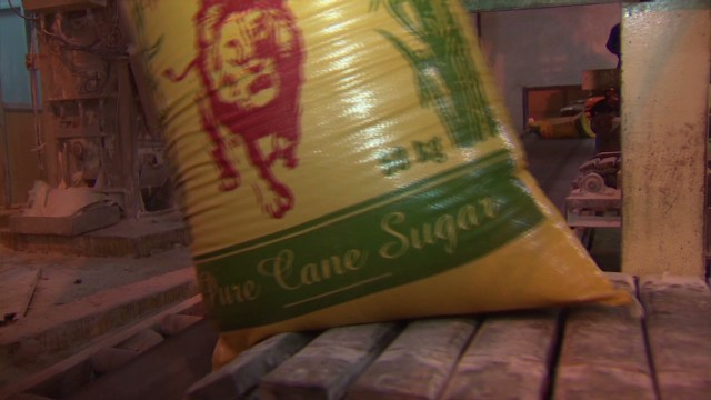 Sugar cane waste powers Uganda