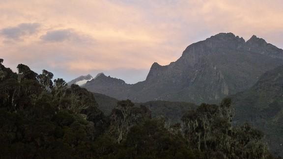 The Rwenzori glaciers occur on just three of the range
