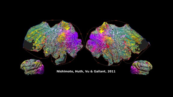 In this illustration, where there are similar colors, those brain regions respond similarly to movie clips, Jack Gallant's lab showed.