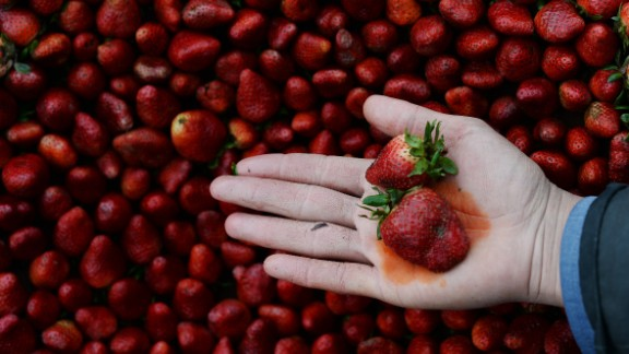 Every year, the Environmental Working Group publishes its Dirty Dozen list, naming the fruits and vegetables that rank highest in pesticide residue. This year, strawberries remained at the top of the list; a single sample of strawberries showed 20 pesticides.