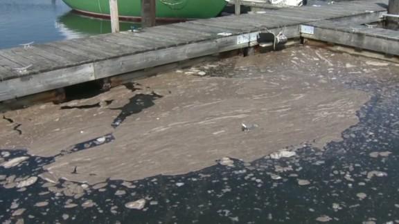 pkg stamford connecticut sewage spill_00001607.jpg