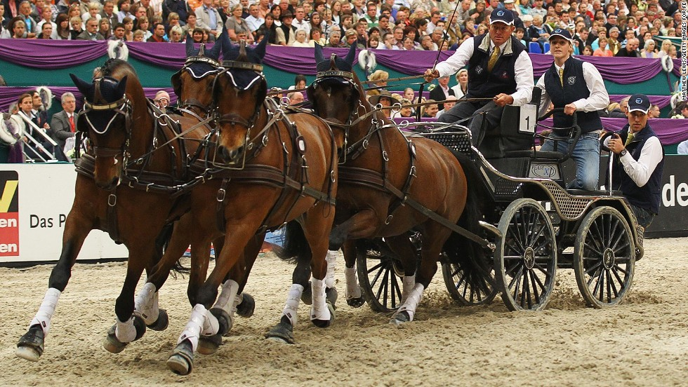 <strong>DRIVING</strong>: Riders sit on a vehicle drawn by a single horse, a pair, or a team of four, which face three trials -- dressage, marathon and obstacle driving. Given that horses were driven long before they were ridden, they've had many years of practice for this event.