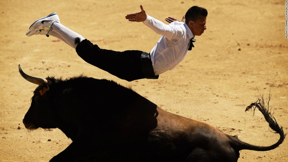 MAY 2 - MADRID, SPAIN: A 'Recortadore' jumps over a bull during a bullfight. 'Recortes' is a bloodless version of the sport where the performance consists of acrobatically leaping over a bull. The ones who dare to get closer to the animal and show less fear are the winners.