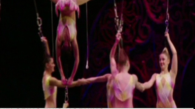 Performers injured after circus act fall