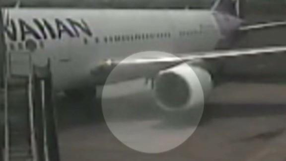 erin obrien stowaway video in maui_00005411.jpg