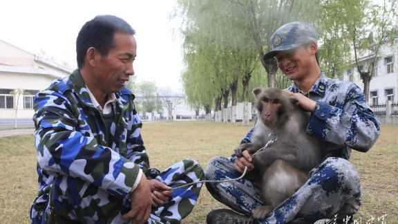 """""""The monkeys are loyal bodyguards who defend the safety of our comrades."""""""