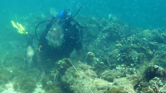 Explorer Brandon Clifford believes these are the remains of Columbus' Santa Maria.