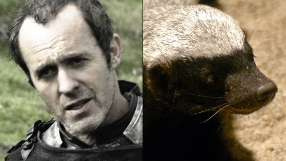 """Stannis Baratheon / Honey Badger: The show is filled with foul, charismatic and clever characters, but Stannis is singular in his drab, relentless thirst for power. The dour, wanna-be king has the """"personality of a lobster,"""" but few can match his pugnaciousness. He's even willing to  battle his brother and embrace religious fundamentalism to get the iron throne. Like Honey Badger, that squat, unstoppable predator made famous by a viral video, Stannis """"don't give a s***."""""""