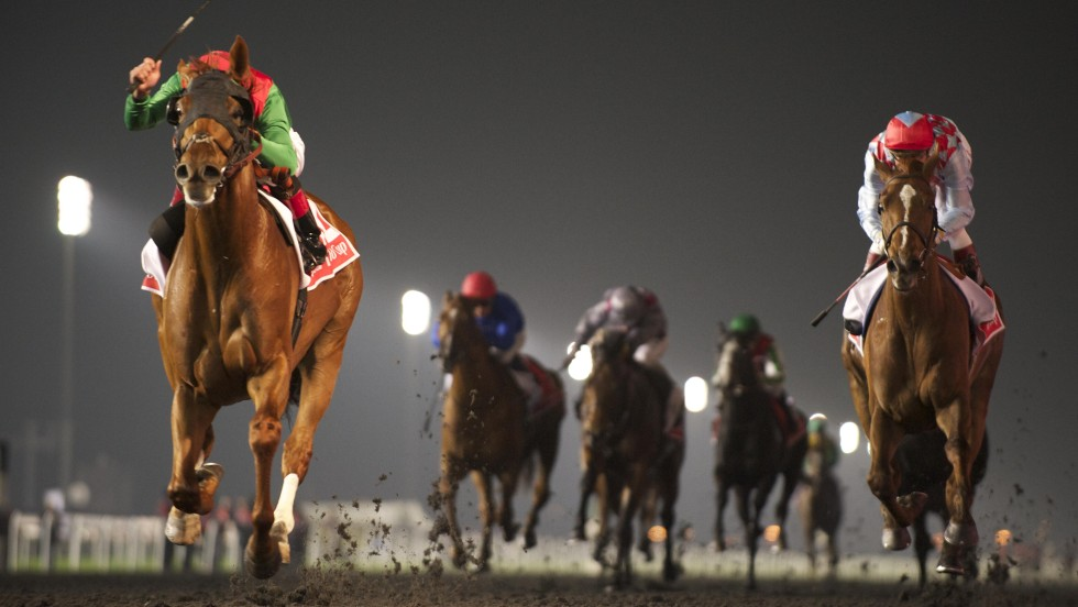 Animal Kingdom (left) wins the 2013 Dubai World Cup, the world's richest horse race.