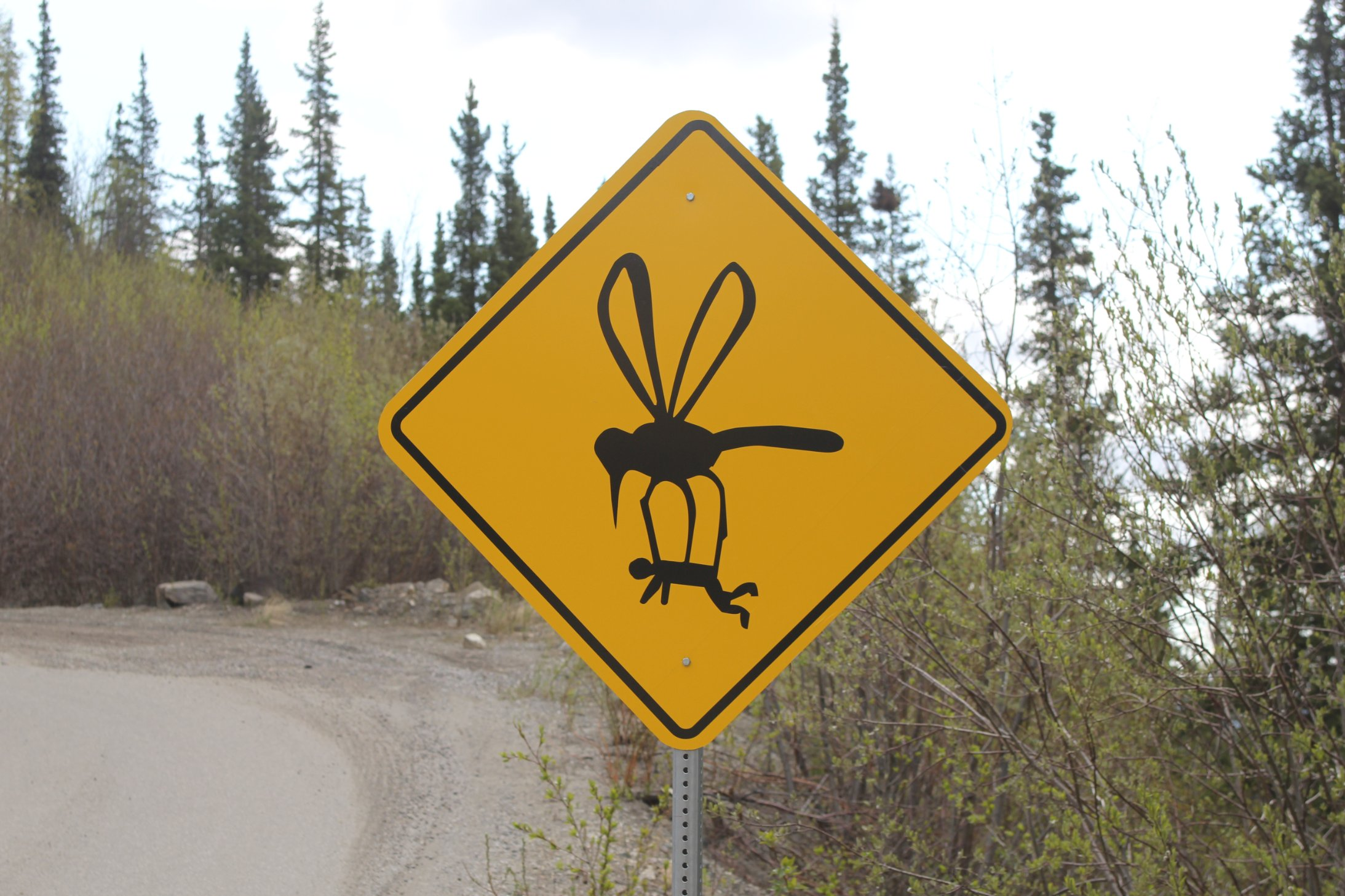 Witty Signs Keep Drivers Focused On Tricky Alaskan Road Cnn Travel