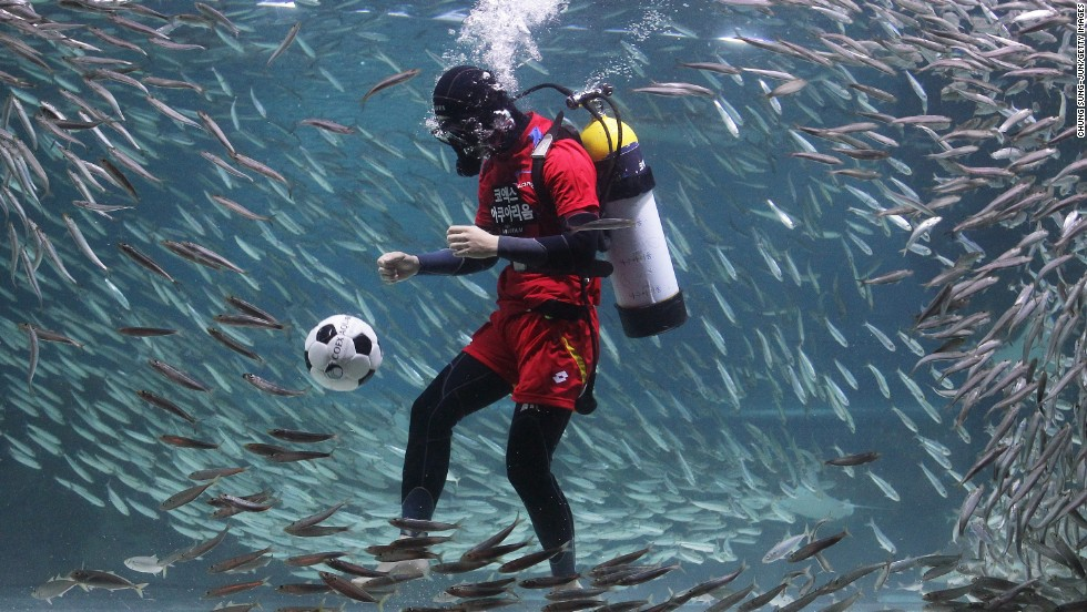 To show support for the South Korea soccer team as it prepares for the World Cup, a diver plays in a tank full of sardines Monday, June 9, at the COEX Aquarium in Seoul, South Korea.