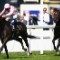 The Fugue Ascot