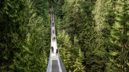 British Columbia's Capilano Suspension Bridge is only a few minutes away from Vancouver's city center. Built in 1889, it stretches 137 meters across and 70 meters above the Capilano River.
