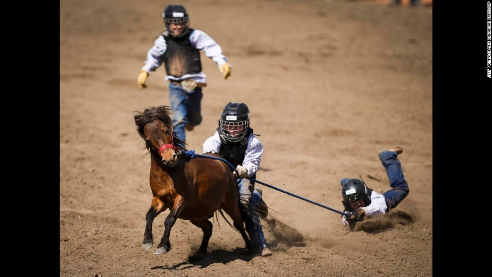 A team tries to catch and ride a pony during the Calgary Stampede in Calgary, Alberta, on Sunday, July 6.