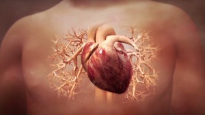 Almost half of all heart attacks are 'silent'