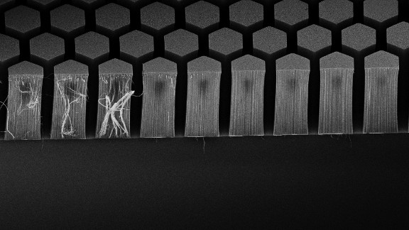 Each carbon nanotube measures roughly one millionth of a millimeter.