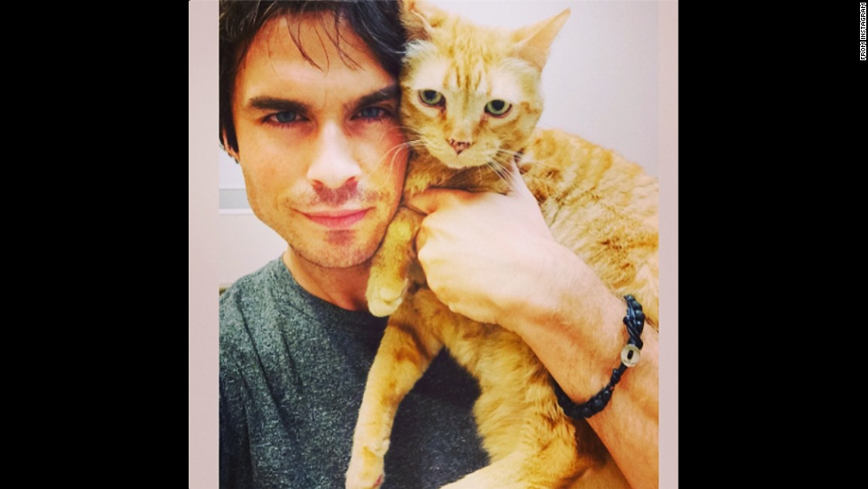 "Actor Ian Somerhalder <a href=""http://instagram.com/p/qjlDokqJ3r/"" target=""_blank"">posted a selfie</a> with his cat on Thursday, July 17. ""Morning vet visit with moke before heading to my 1st Day of work for SEASON 6 of The Vampire Diaries!"" he wrote on Instagram."