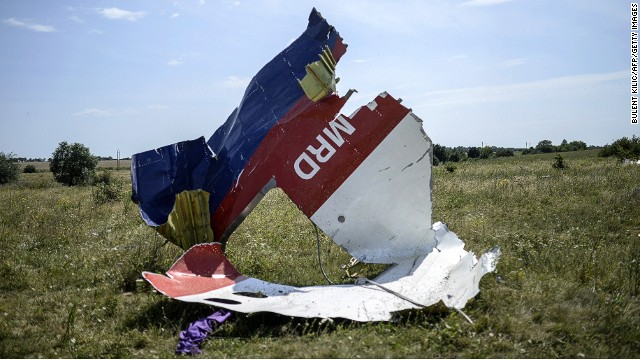 A picture shows a piece of debris of the fuselage at the crash site of the Malaysia Airlines Flight MH17 east of Donetsk on July 25, 2014.
