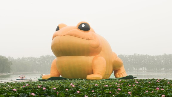 The 72-feet-tall toad floats on a giant lily pad in Yuyuantan Park. It was installed two weeks ago.