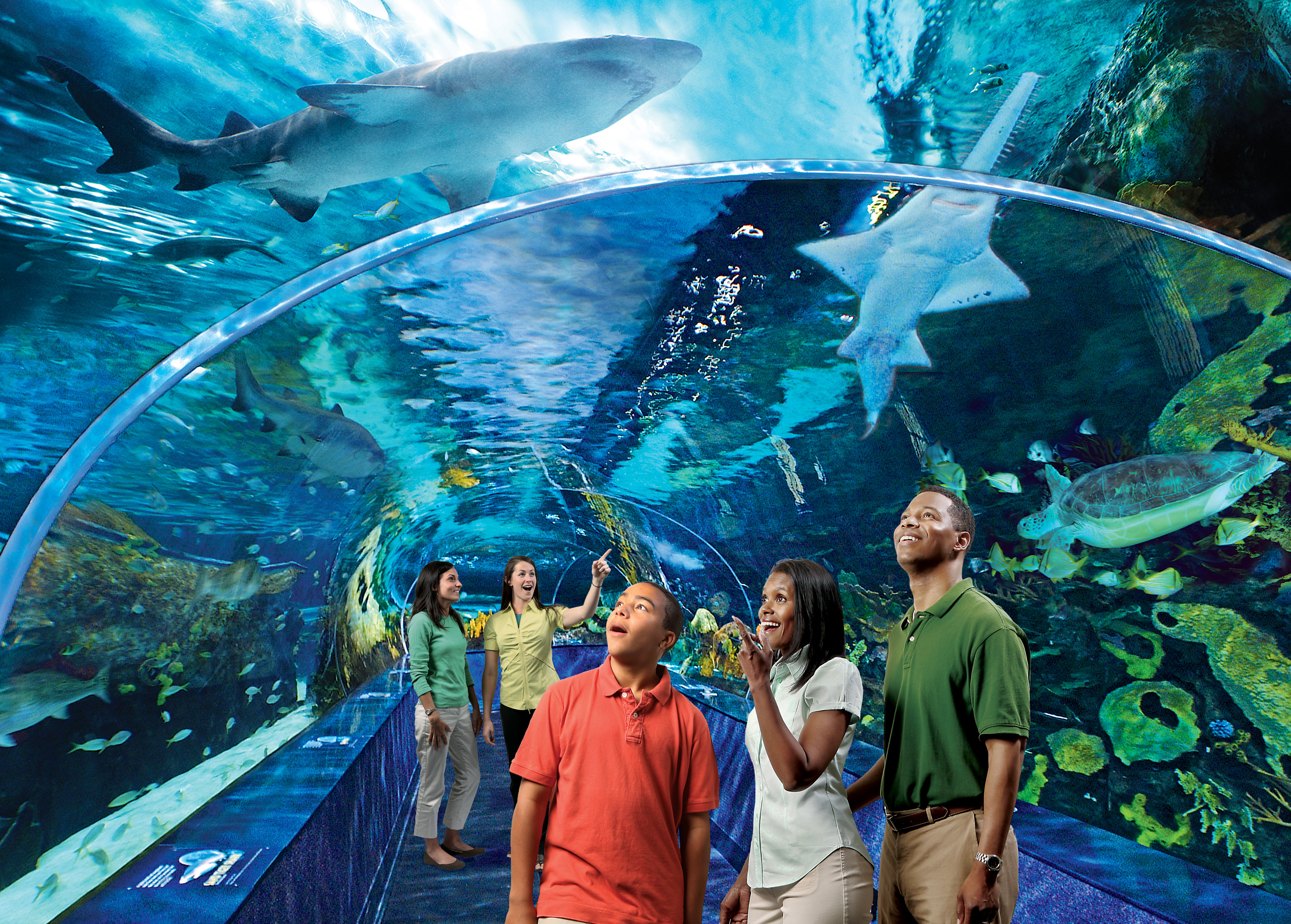 And The World S Best Zoo Is Cnn Travel