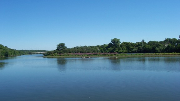 """Geneva, Illinois, resident D. Samuel Melchior lives right by the Fox River. """"The Fox River is my favorite because of its unspoiled natural beauty and life affirming character,"""" he said. """"I get to enjoy its splendor almost every day."""""""