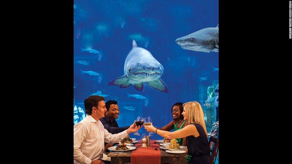 Dining on a rock, dining inside an ancient cave, how about dining also with sharks? The Durban-based Cargo Hold restaurant is built in a replica ship, with tables next to a wall-sized shark aquarium.