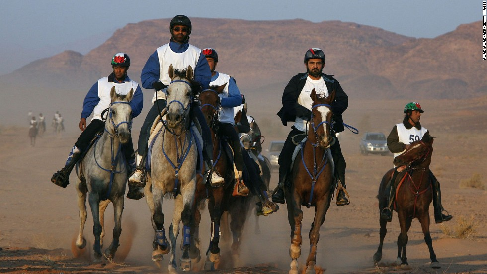 In endurance riding, horses tackle a 100-mile route in the space of one day. Sheikh Mohammed, the ruler of Dubai pictured second-right here, is a past world silver medalist in the equestrian equivalent of a marathon.