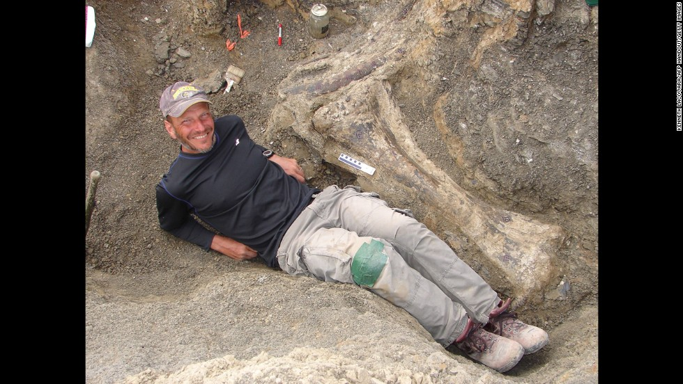 "Ken Lacovara, a Drexel University professor and the lead author of the study announcing the discovery, lies besides a massive tibia. He said the Dreadnoughtus schrani would have had ""a lifelong obsession with eating"" in order to grow as big as it did."