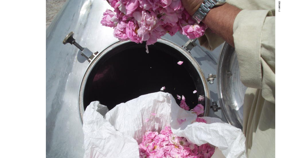 "Afghan farmers distill native rose blossom for ""7 Virtues"" fragrance Noble Rose of  Afghanistan, which is now sold in some of the world's most famous luxury boutiques."