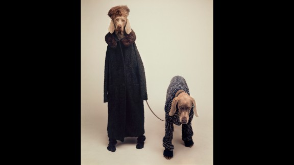 """Some of Wegman's most enduring images feature dogs in costumes. For """"Going Out"""" (1990) Wegman dressed up Fay and her daughter Batty in outerwear."""