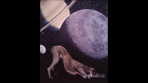 """Fay's daughter Batty was a frequent subject in Wegman's work, including """"Homage to Space"""" (1995). Batty eventually had her own puppies that Wegman also used in his work."""