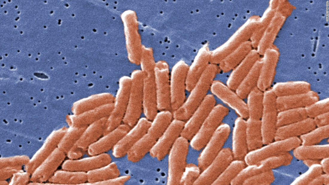 Some drugs still work against salmonella, though the bacteria are showing increasing resistance. They are a common cause of food poisoning.