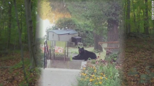 Bear kills Rutgers student on hike