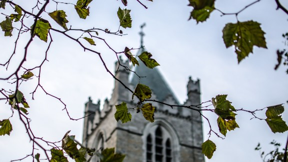 Green leaves just starting to color dangle in front of Christ Church Cathedral. The church, located in Dublin, Ireland, is one of the city